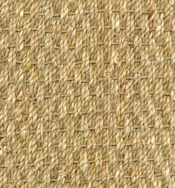 Seagrass Normal - SS20401